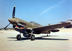 Curtiss P-40E Warhawk 2 USAF