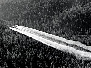 1955. Fort tri-motor spraying DDT. Western spruce budworm control project. Powder River control unit, OR. (32213742634)