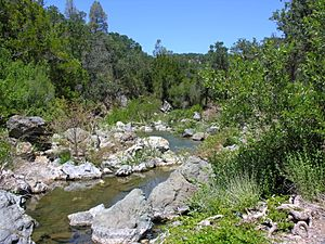 Isabel Creek July 2011 By Robert A. Leidy U.S. EPA.jpg