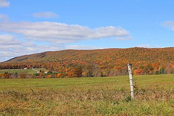 Buck Mountain from Buck Mountain Road.JPG