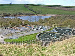 Cassop Sewage Farm (and National Nature Reserve^) - geograph.org.uk - 153628