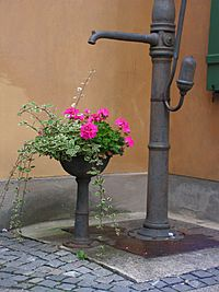 Fuggerei-Waterpump
