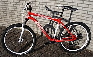 HardtailMountainBike 2010 Specialized Rockhopper