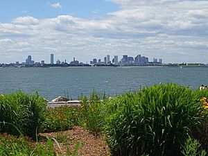 Boston from Spectacle Island