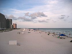 Condominiums and hotels on the beach