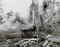 Little-river-lumber-company-skidder-tn1