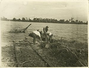 StateLibQld 1 242224 Burdekin River in flood in Ayr, north Queensland