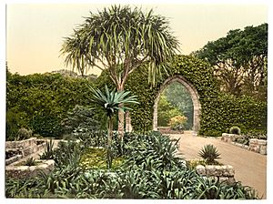 Scilly Isles, Tresco Abbey, old arches, Cornwall, England-LCCN2002696613