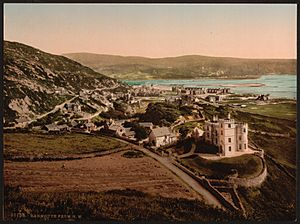 From N. W., Barmouth, Wales-LCCN2001703421
