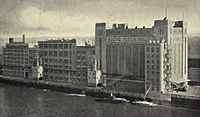 "A sepia photograph of a large warehouse complex on a river bank, including an art deco building signed ""BALTIC FLOUR MILLS"""