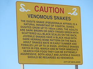 Caution sign for dugite snakes in the coastal dunes near Swanbourne Beach, Western Australia.