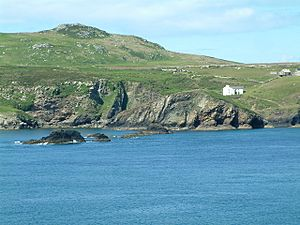 The Bitches, Ramsey Sound - geograph.org.uk - 479270.jpg