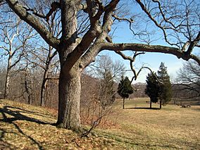 Waverly Oaks, Belmont, MA - 3.JPG