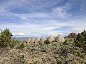 2014-08-11 16 18 47 Ovens in Ward Charcoal Ovens State Historic Park.JPG