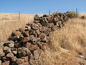 Stone wall In a San Jose park