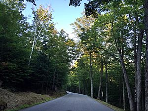2016-09-03 17 17 55 View eastbound down the Mount Washington Auto Road at about mile 1.0 (about 2020 feet above sea level) in Pinkham's Grant Township, Coos County, New Hampshire