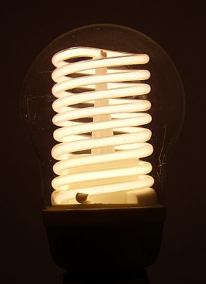 Cold-Cathode-CFL-illuminated