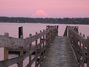 Mount Rainier over Totten Inlet dock