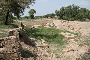 Archaeological Site of Harappa by smn121 -22