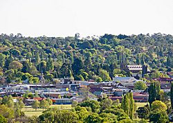 Armidale, New South Wales
