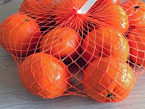 Mandarin oranges in mesh bag
