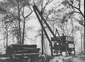 Saw Mill For Sale >> Logging Facts for Kids