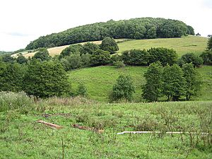 View North across the valley - geograph.org.uk - 909838.jpg