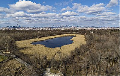 Aerial photograph of the Ridgewood Reservoir
