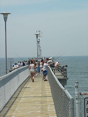 FishingPierontheChesapeakeBayBridgeTunnel