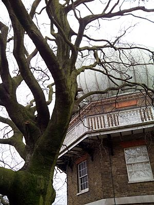 28-inch telescope, Royal Observatory and tree, Greenwich, London, UK, 2015