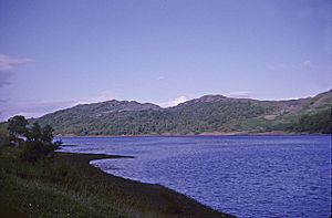 Shoreline, Kames Bay, Loch Melfort, Argyll and Bute - geograph.org.uk - 749396