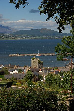 Taaffe's Castle and Carlingford Harbour - geograph.org.uk - 986404