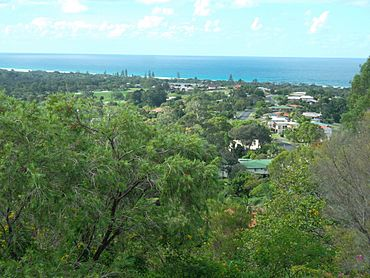 View of Ocean Shores, NSW, from Lookout Park 2014.jpg