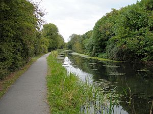 Wilts-and-Berks-Canal-Swindon