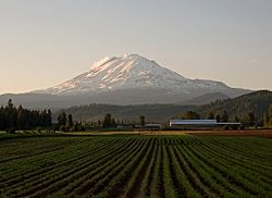 Mt Adams from Trout Lake Highway