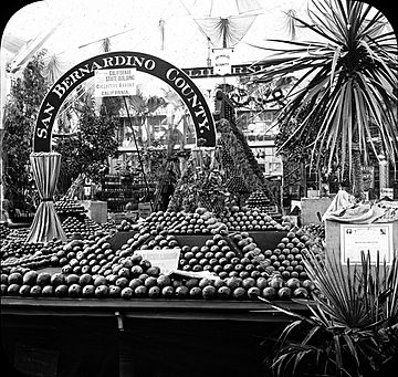 World's Columbian Exposition- Horticultural Building, Chicago, United States, 1893.