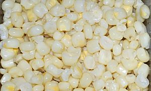 Sweet White Corn