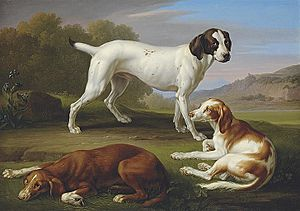 Johann Wenzel Peter - A pointer and two setters in a classical landscape