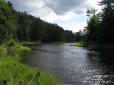 Bog River Flow, St Lawrence County, NY