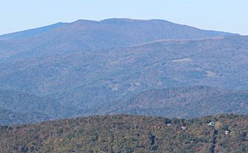 Grassy Ridge Bald from Grandfather Mtn, Oct 2016.jpg
