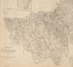 Wynyard county NSW 1897