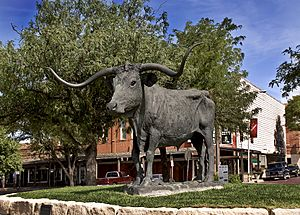 Dodge City Longhorn