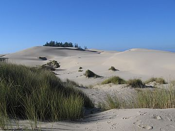 USA Oregon Dunes
