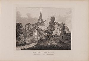 Scotia Depicta - Dunfermline Abbey and Mill -Plate-