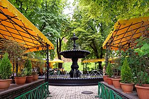Café and Fountain - Golden Gate, Kiev, Ukraine