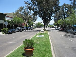 Grand Ave Escondido