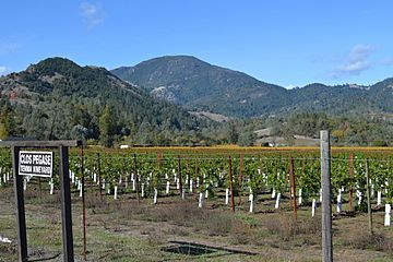 Mount Saint Helena, viewed from Napa Valley.JPG