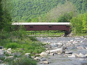 Forksville Covered Bridge.jpg