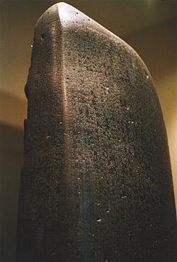 "Side view of the stele ""fingertip"""
