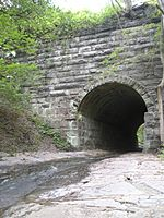 Grist Mill Trail tunnel
